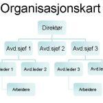Organisasjonskart og organisasjonsform